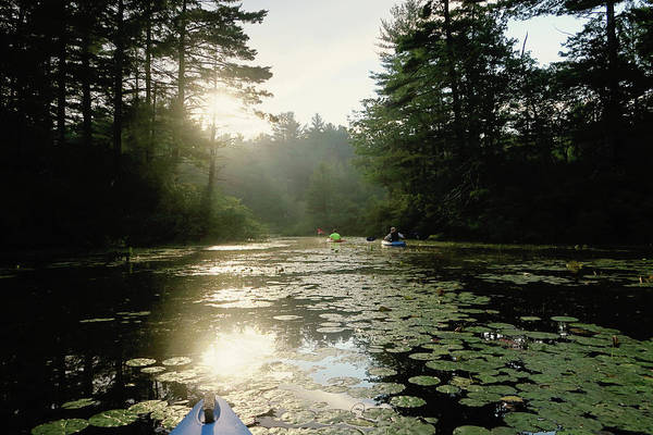 Photograph - Kayaking by Sue Collura