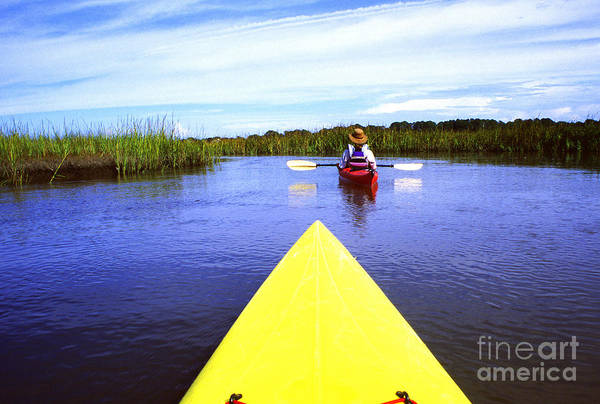 Photograph - Kayaking Through Bloody Marsh by Thomas R Fletcher