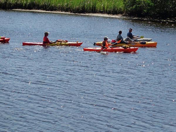 Photograph - Kayaks by John Mathews