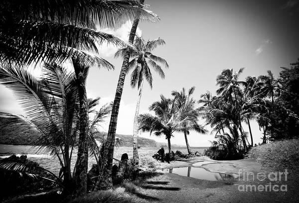 Photograph - Keanae Landing Maui Hawaii by Sharon Mau
