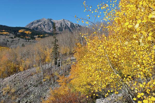 Photograph - Kebler Pass Autumn Mountain Landscape by Cascade Colors