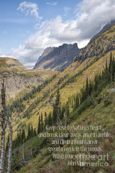 Photograph - Keep Close To Nature's Heart by Jemmy Archer