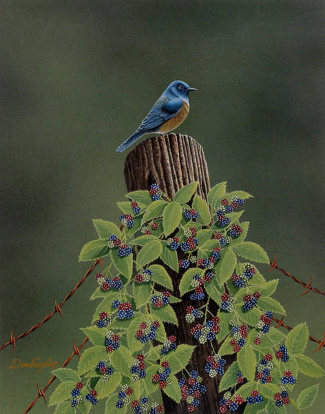 Eastern Bluebird Painting - Keeping Watch by Don Engler