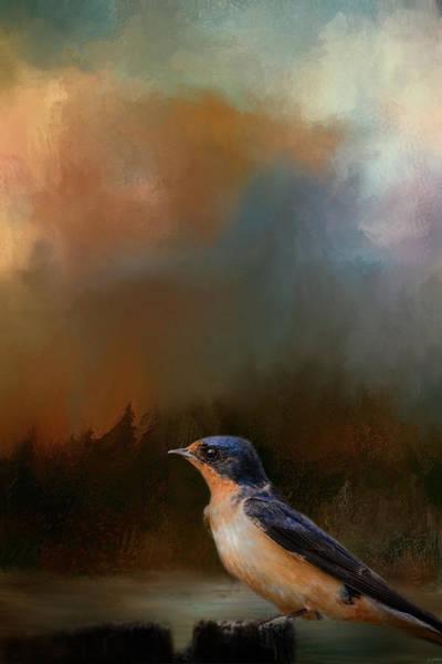 Barn Swallow Wall Art - Photograph - Keeping Watch by Jai Johnson