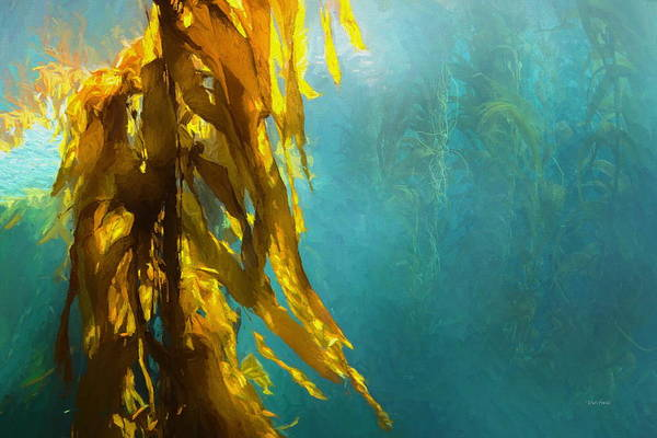 Painting - Kelp Forest by Russ Harris