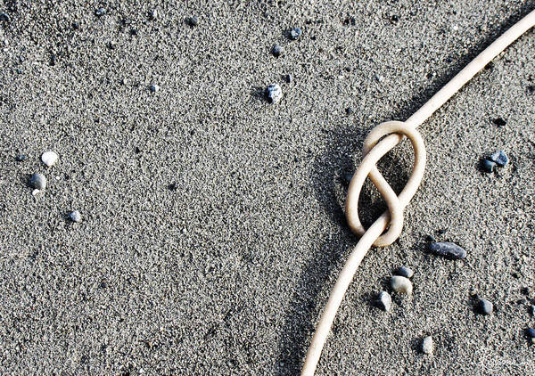 Photograph - Kelpic Knot by Rasma Bertz