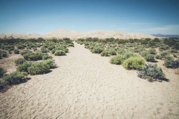 Photograph - Kelso Dunes No.1 by Margaret Pitcher