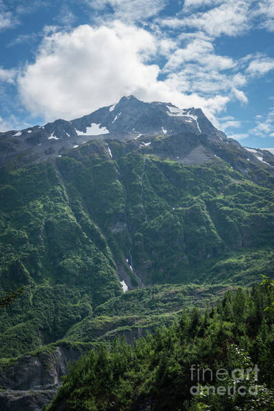 Wall Art - Photograph - Kenai Fjords Mountain Range by Michael Ver Sprill