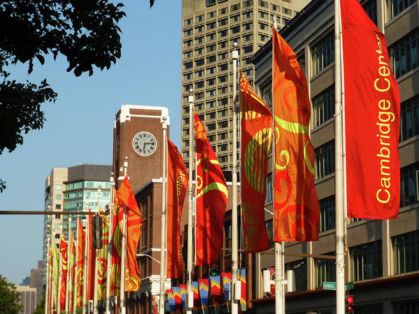 Photograph - Kendall Square Old School Flags Cambridge Ma by Toby McGuire