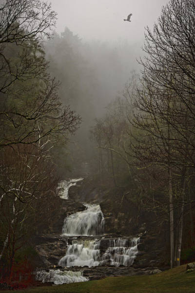 Photograph - Kent Falls Under Spring Morning Mist by Chris Lord