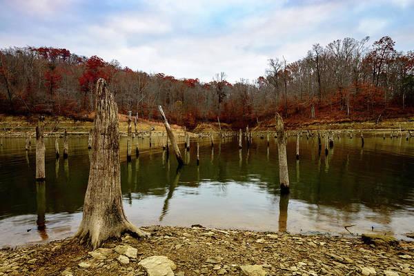 Photograph - Kentucky Hollow by Michael Scott