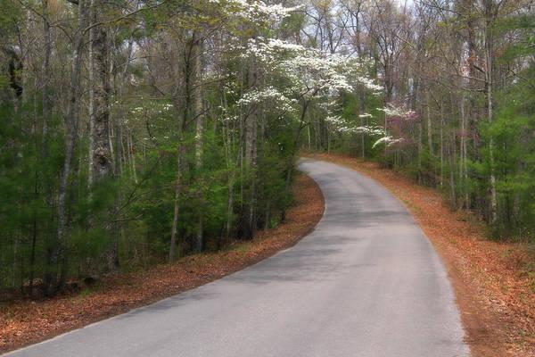 Photograph - Kentucky Road by Heather Kenward