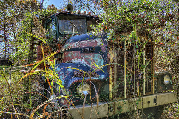 Photograph - Kenworth In The Weeds by Jerry Gammon