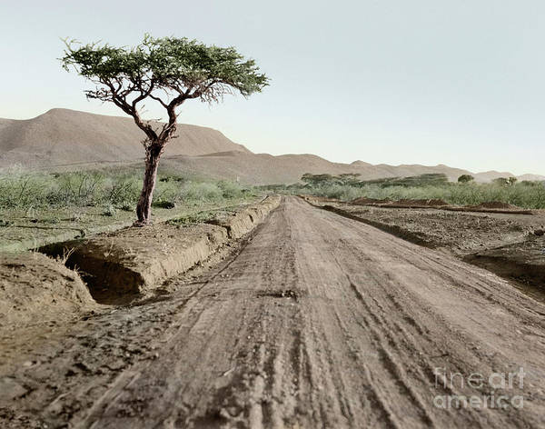 Photograph - Kenya Highway, 1936 by Granger