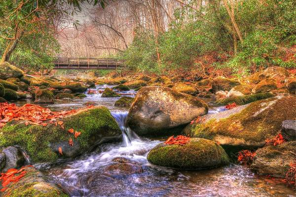Photograph - Kephart Prong Bridge In Autumn by Frank G Montoya