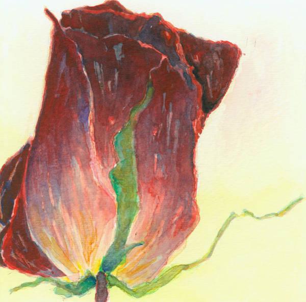 Floral Watercolor Drawing - Kept Flower Series Corolla Set II by Jeffrey Hicks