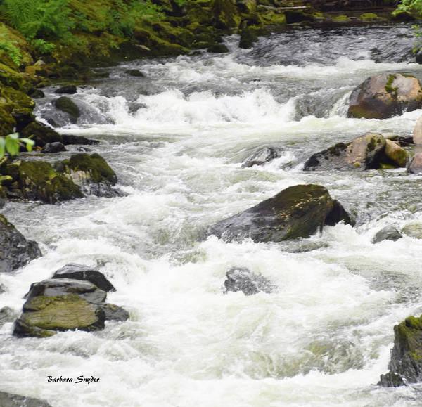 Ketchikan Photograph - Ketchikan Creek Of Creek Street Detail by Barbara Snyder
