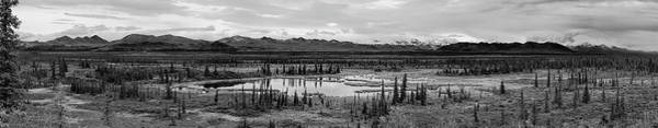 Photograph - Kettle Pond And The Alaska Range by Peter J Sucy
