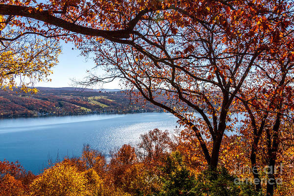 Photograph - Keuka Lake Vista by William Norton
