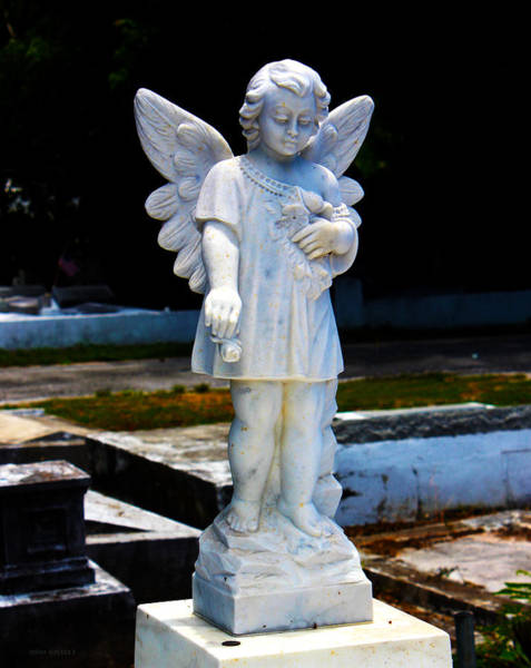 Photograph - Key West Angel #4 by Susan Vineyard