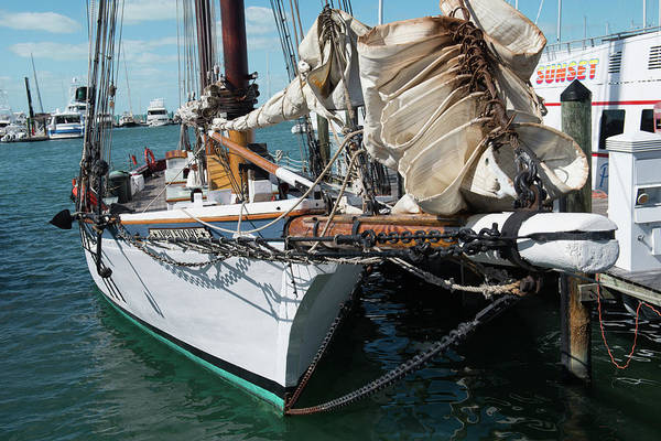 Photograph - Key West Appledore Sailboat by Dennis Dame