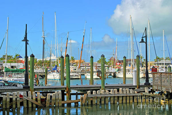 Photograph - Key West Docks by Jost Houk