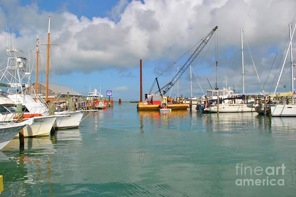 Photograph - Key West Marina by Jost Houk