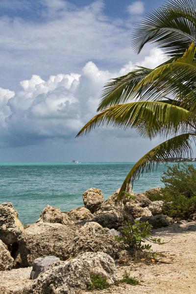 Photograph - Key West Paradise 4 by Bob Slitzan