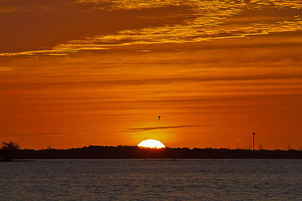 Photograph - Key West Sunrise 31 by Bob Slitzan