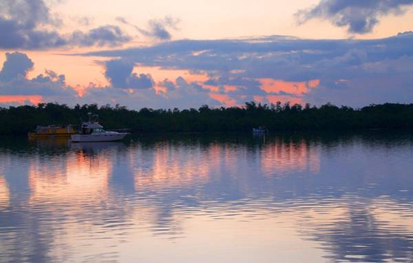 Photograph - Key West Sunrise 5 by Bob Slitzan