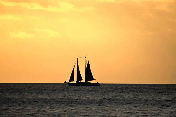 Photograph - Key West Sunset Sail by Bill Cannon