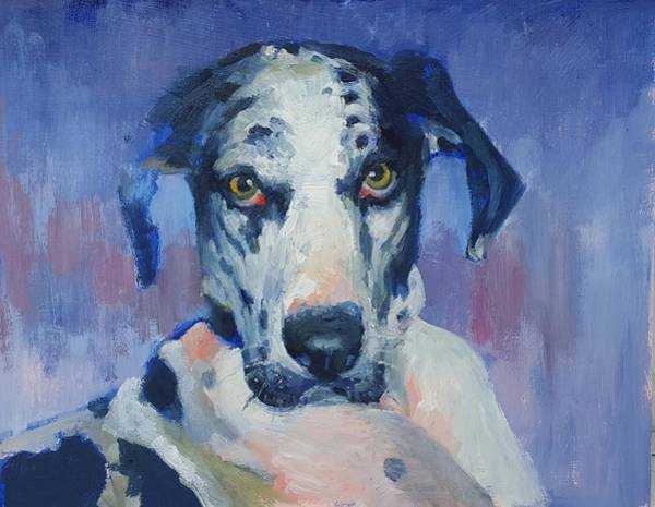 Black Great Dane Painting - Khloe Harlequin Great Dane by Nora Sallows