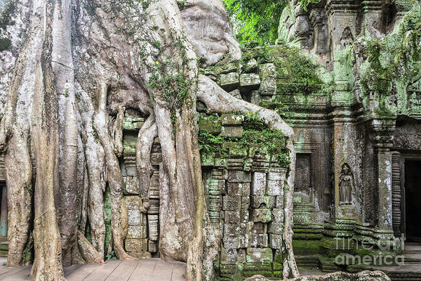 Photograph - Khmer Ta Prohm Temple In Angkor by Didier Marti