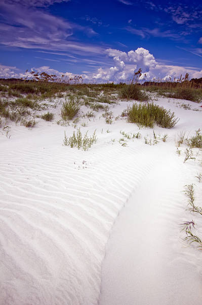 Kiawah Island Photograph - Kiawah Island Beachwalker by Dustin K Ryan