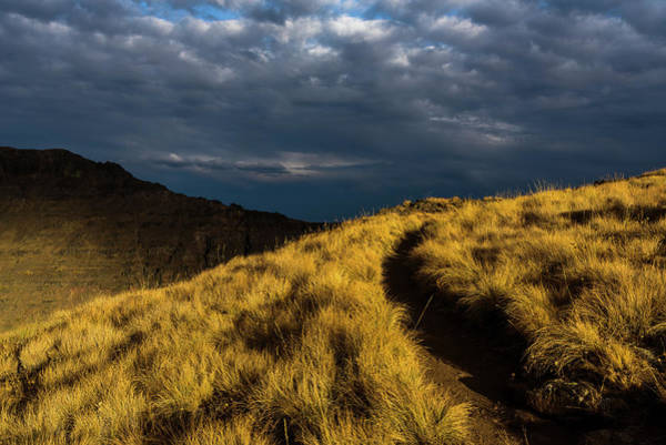 Photograph - Kiger Gorge Foot Trail by Robert Potts