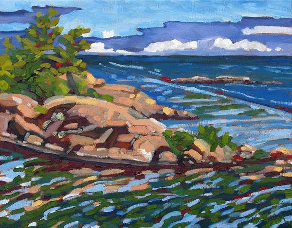 Birder Painting - Killarney Rocks by Phil Chadwick