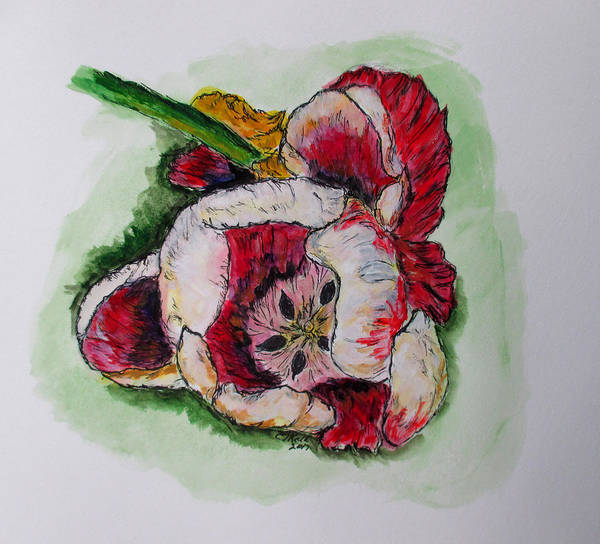 Kimberly's Flowers Art Print