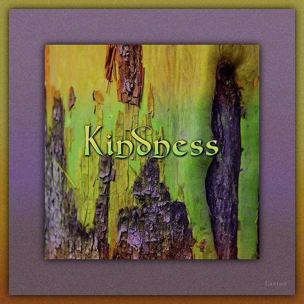 Digital Art - Kindness by Richard Laeton