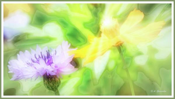 Centaurea Montana Wall Art - Digital Art - Kindred Spirits, Cornflower And Cosmos Flower by A Gurmankin