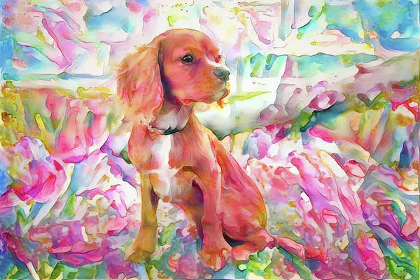 Digital Art - King Charles Spaniel Pastel Watercolors by Peggy Collins