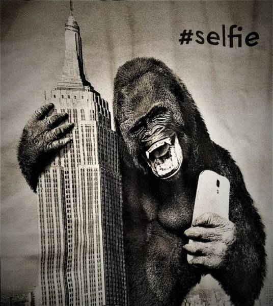 Photograph - King Kong Selfie by Rob Hans