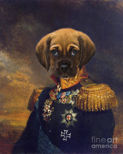 Wall Art - Painting - King Leopold by Delphimages Photo Creations