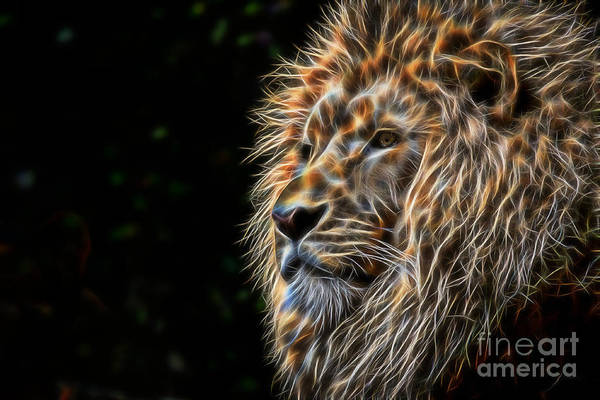 Digital Art - King Of The Jungle - Fractal Male Lion by Tracey Everington