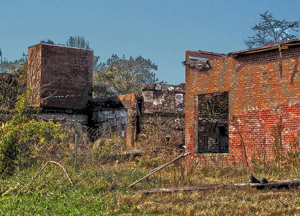Wall Art - Photograph - King Of The Rubble by David A Brown