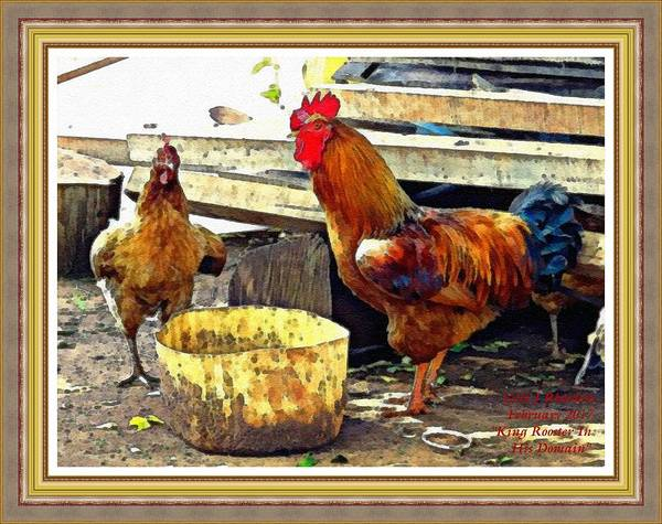 King Size Painting - King Rooster In His Domain L A With Alt. Decorative Ornate Printed Frame. by Gert J Rheeders