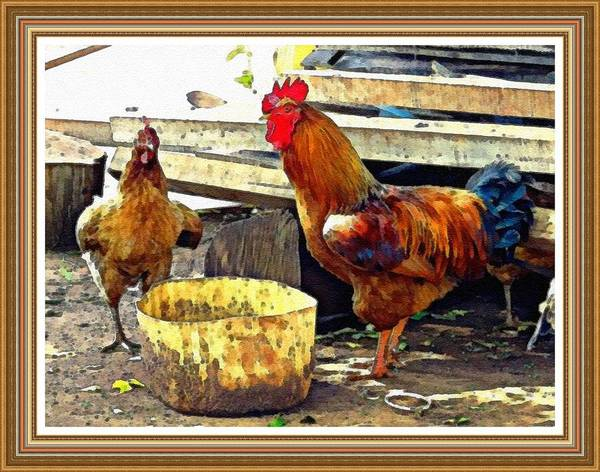King Size Painting - King Rooster In His Domain L B With Alt.decorative Ornate Printed Frame. by Gert J Rheeders