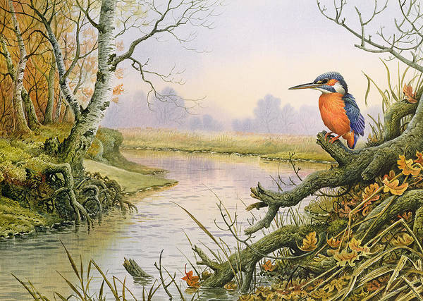Feather River Wall Art - Painting - Kingfisher  Autumn River Scene by Carl Donner