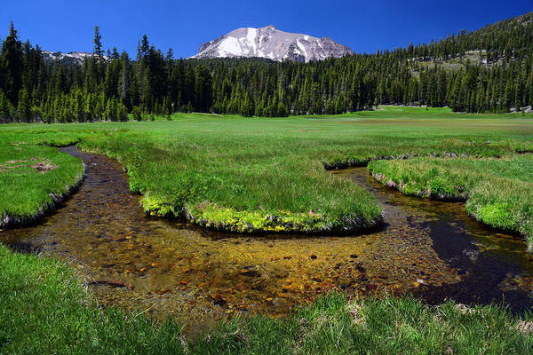 Photograph - Kings Brook With Mount Lassen Volcano by Frank Wilson
