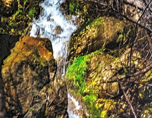 Wall Art - Photograph - Kings Canyon Waterfall by Nancy Marie Ricketts