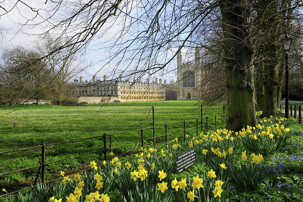 Wall Art - Photograph - Kings College Chapel In Spring by Liz Pinchen